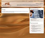 Namibian Copper NL Website Link
