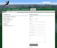 NGE Capital Limted Website Link