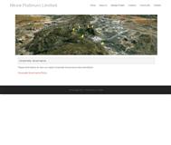 NKWE Platinum Limited Website Link