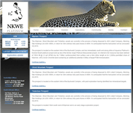 NKWE Platinum Limited Website Link