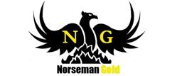 Norseman Gold Plc