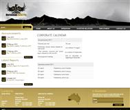 Norseman Gold Plc Website Link
