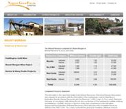 Norton Gold Fields Limited Website Link
