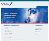 Panorama Synergy Ltd Website Link