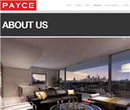 Payce Consolidated Limited Website Link