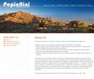 Pepinnini Minerals Limited Website Link