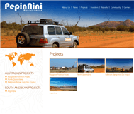 Pepinnini Minerals Limited Website Link