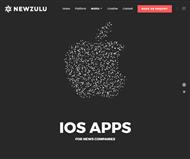 Newzulu Limited Website Link