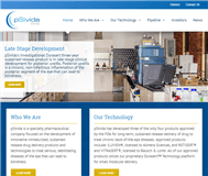pSvidia Corp Website Link