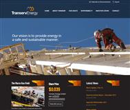 Transerv Energy Limited Website Link