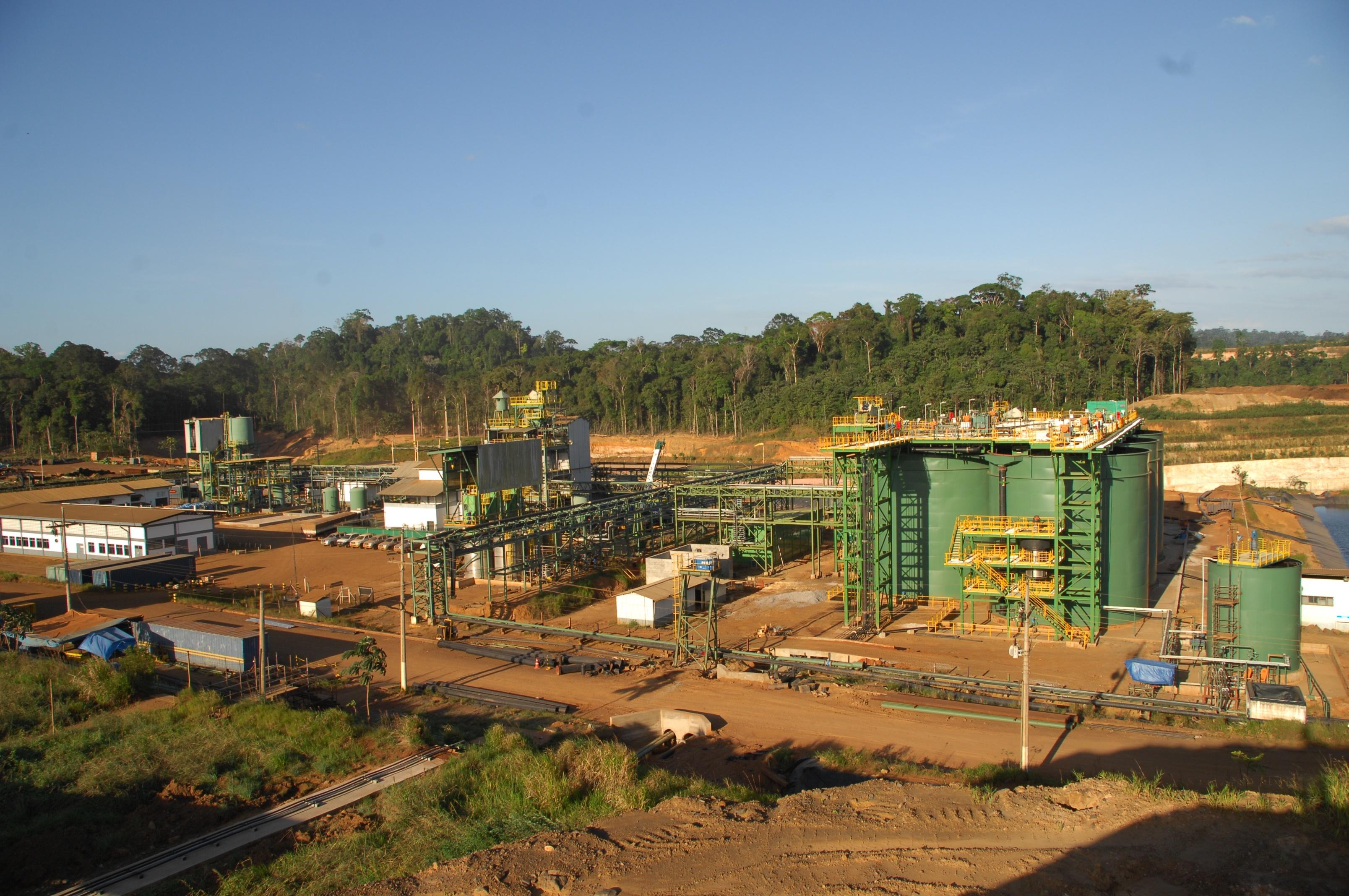 Tucano CIL Gold Plant