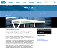 BlueScope Steel Limited Website Link
