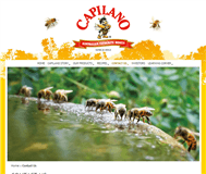 Capilano Honey Limited Website Link