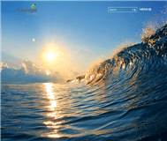 Carnegie Wave Energy Limited Website Link