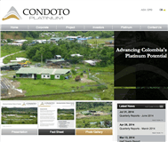 Condoto Platinum NL Website Link
