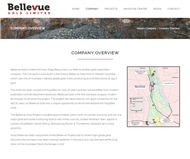 Bellevue Gold Limited Website Link