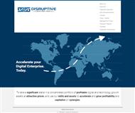 Disruptive Investment Group Limited Website Link