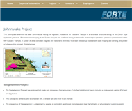 Forte Consolidated Limited Website Link