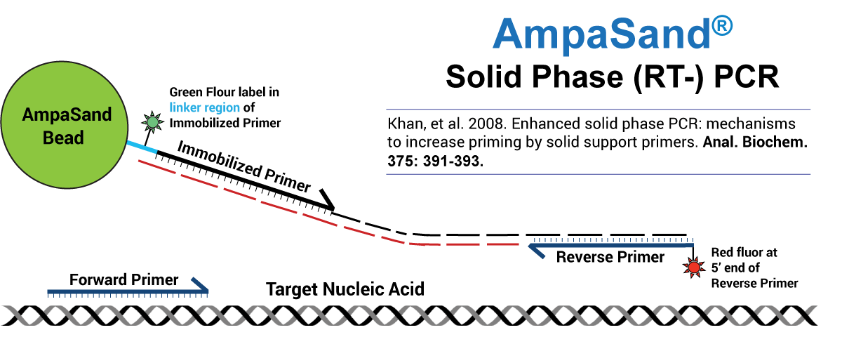 Solid Phase Amplification